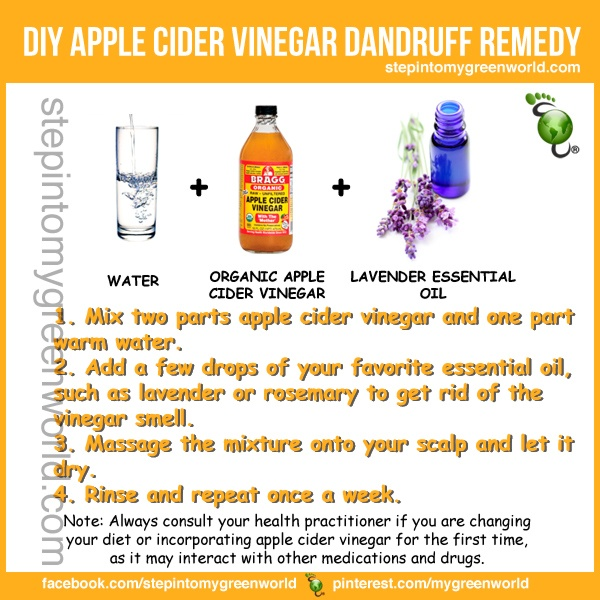 Watery rose apples as vinegar essay
