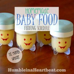 Homemade Baby Food Feeding Schedule for a 6 Month Old
