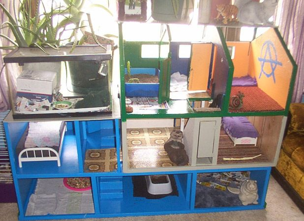 Rat Houses & Cages   Rat house, Pet rats, Diy stuffed animals
