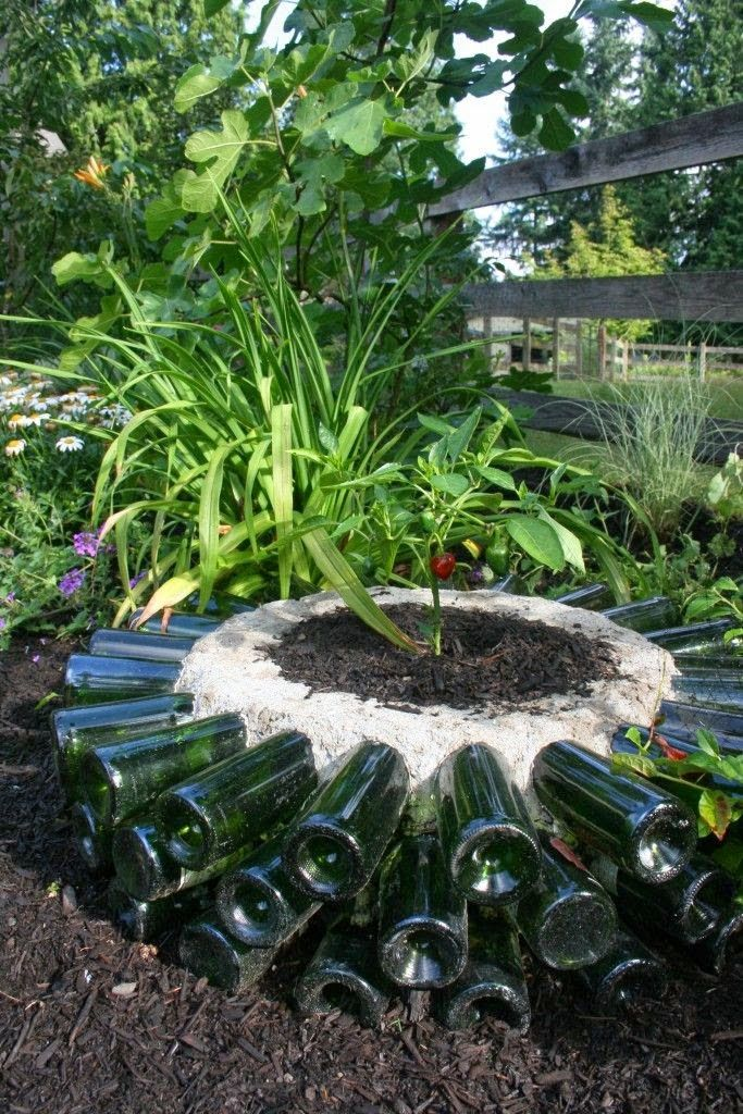"""This is a wonderful project that uses the sun rays to heat the wine bottles to create a """"Hot Bed"""" so you can grow plants that you normally can't in your zone."""