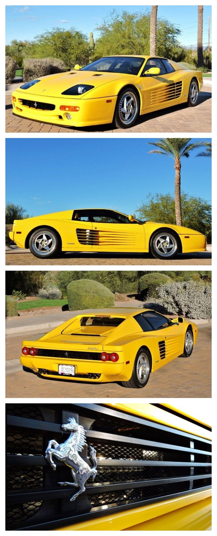 Last of the Testarossa's! Check out this super rare Ferrari Testarossa