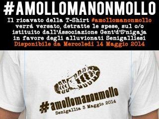 20140514-gds-amollomanonmollo-320x240.jpg (320×240)