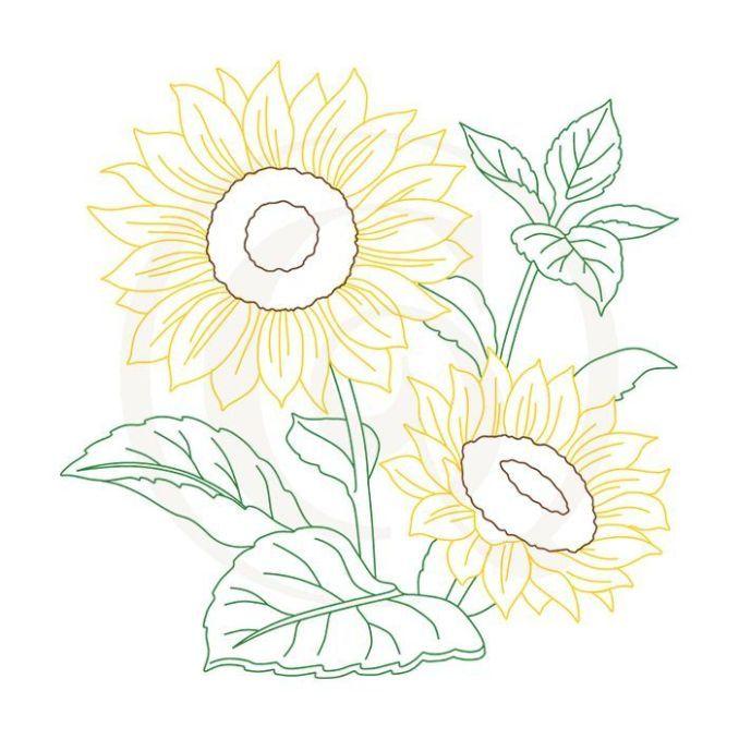 Bunga Gambar Sketsa Dari Beragam Gambar Sketsa Bunga Lengkap Sketsa Bunga Gambar