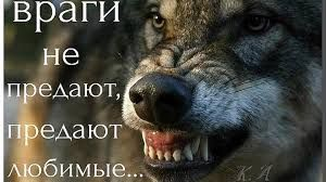 Картинки по запросу люди и волки
