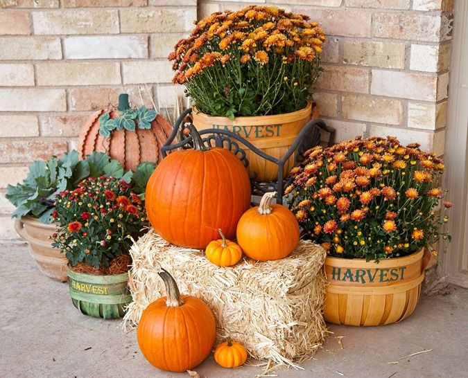 Fall / Autumn / Harvest porch / outdoor decor: Mums and pumpkins