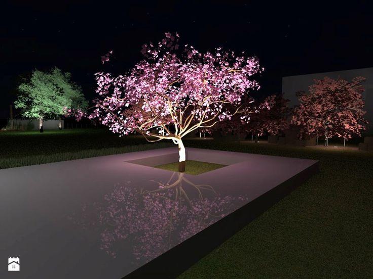 Projekt ogrodu w Sarnowie - Średni ogród za domem, styl nowoczesny - zdjęcie od Hirszberg Pracownia Architektoniczna