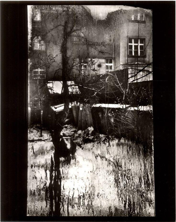 sudek | Galería: Josef Sudek | Oscar en Fotos