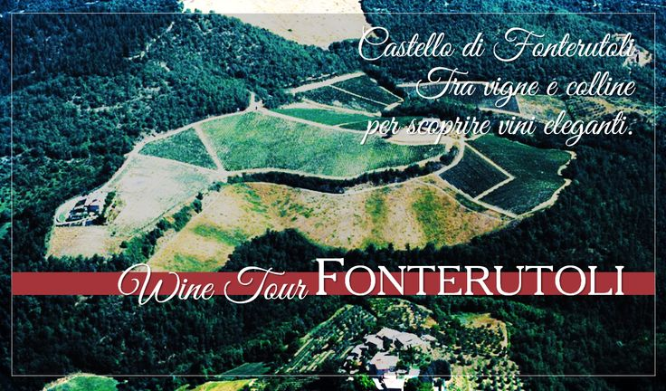 Between vineyards and hills to discover elegant wines. For reservations for large groups contact our Enoteca at enoteca@fonterutoli.it @marchesimazzei #winetour #MarchesiMazzei #Fonteurutoli