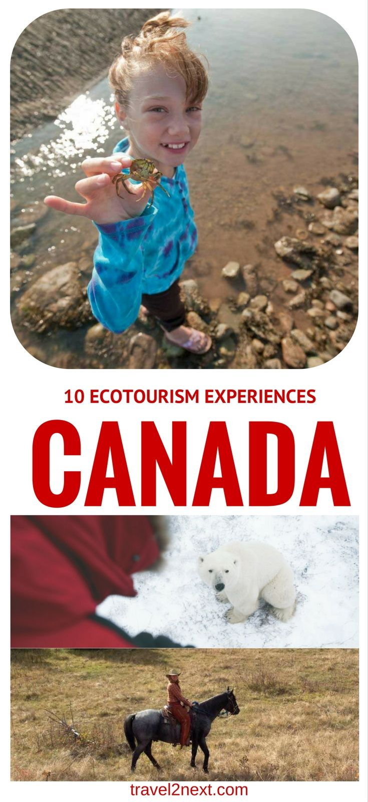 10 ecotourism experiences in Canada. Canada is renowned for its wide-open spaces which offer authentic eco-adventures.