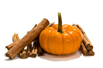 Three #gastroparesis friendly, fall-inspired recipes: Pumpkin Spice Hot Cereal; Baked Pumpkin Pie Pudding; Low Fat Pumpkin Muffins