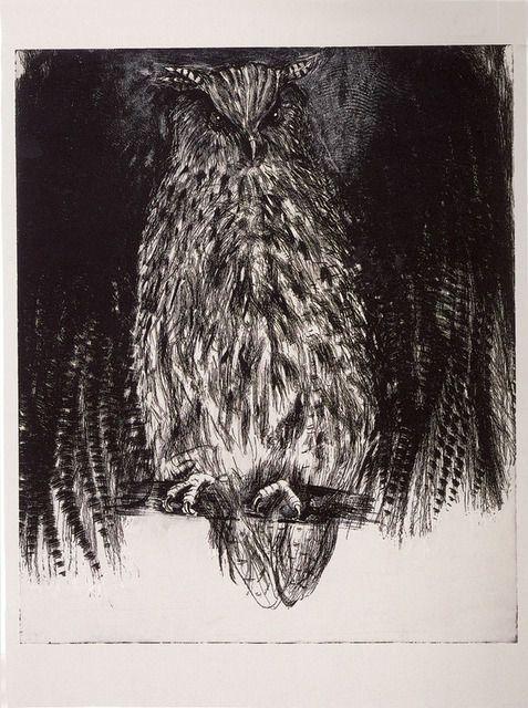 Jim Dine - Owl, 1994. Etching, drypoint.    https://artsy.net/artwork/jim-dine-owl-1