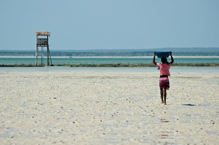 A woman walks to the sea cucumber pens in Velondriake - a sustainable aquaculture project that Blue Ventures oversees.