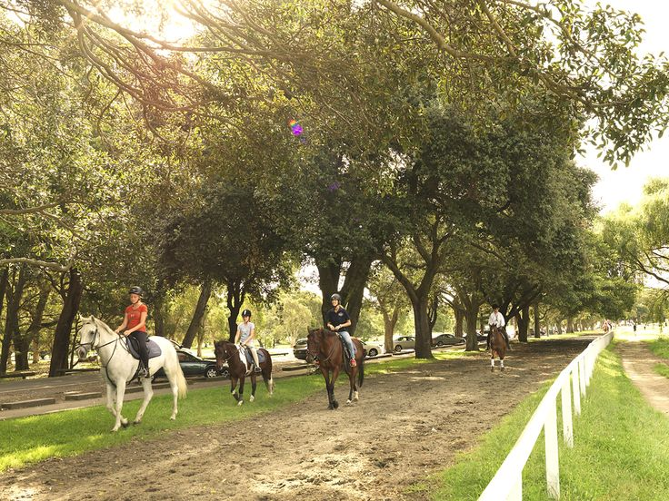 When you think you've done all there is to do in Sydney, then visit Centennial Park. This large urban park, which was initially a swampland, is one of the few places in the world that lets you ride horses in the middle of the city.