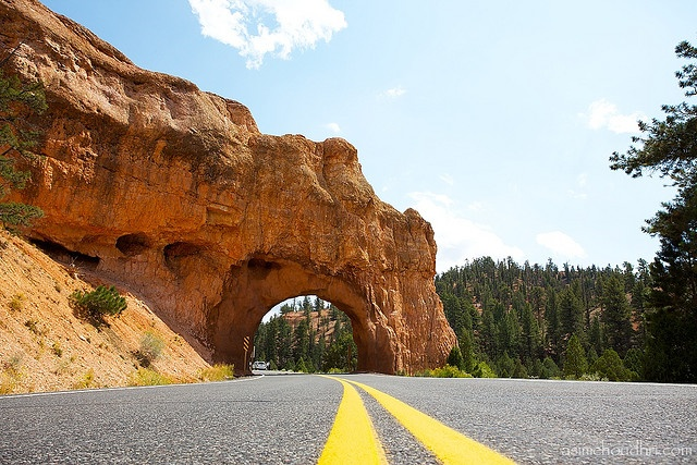 bryce canyon single mature ladies United states - ideas for 4 day weekend trip with elderly mom  las vegas/zion/bryce canyon phoenix/sedona/grand canyon/petrified forest new orleans/plantations.