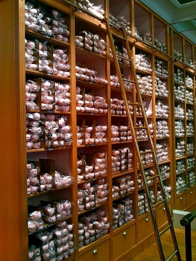 take me there.: Fit, Shoes Libraries, Ballet Shops, Dancedancedance, Ballet Dance, Ballet 3, Point Shoes For, Libraries Ladders, Ballet Shoes