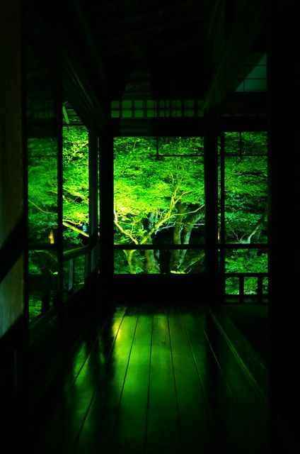 京都 瑠璃光院 Rurikouin, Kyoto, Japan #Kyoto #Green #緑