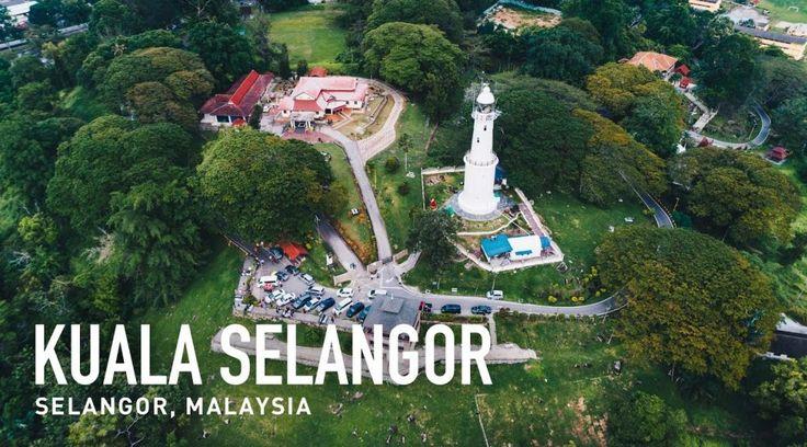 Kuala Selangor Fireflies Tour + Half Day Private Putrajaya & Garden City Tour GL | Sasuman's Travel and Tours