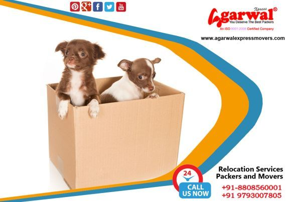 #Packers #and #Movers in #Allahabad, Call Us: +91-8808560001 Agarwal #ExpressPackers  Agarwal Express #PackersandMoversAllahabad is one of the #BestPackers and #MoversCompanyinAllahabad, Best Household Goods Relocation experience for Allahabad Residents. #AgarwalExpressPackers and #Movers is the Top Packers and Movers Company in #Allahabad, with the absolute Packers and Movers,