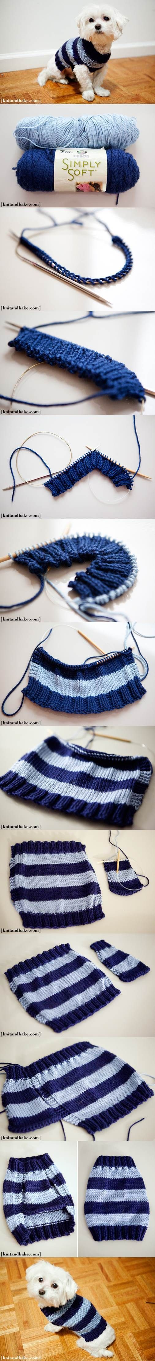 DIY Easy Knitted Dog Sweater 2