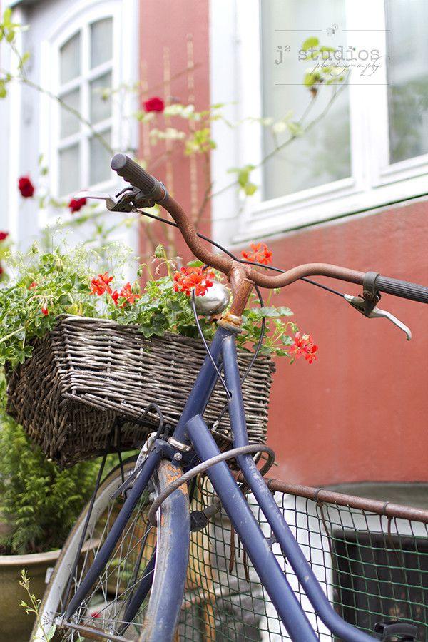 Natural Basket - Bergen Norway, Flowers Art Photography Print