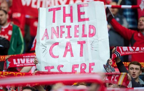 A Liverpool FC fan holds a home-made flag up in tribute to the now world famous Anfield cat.