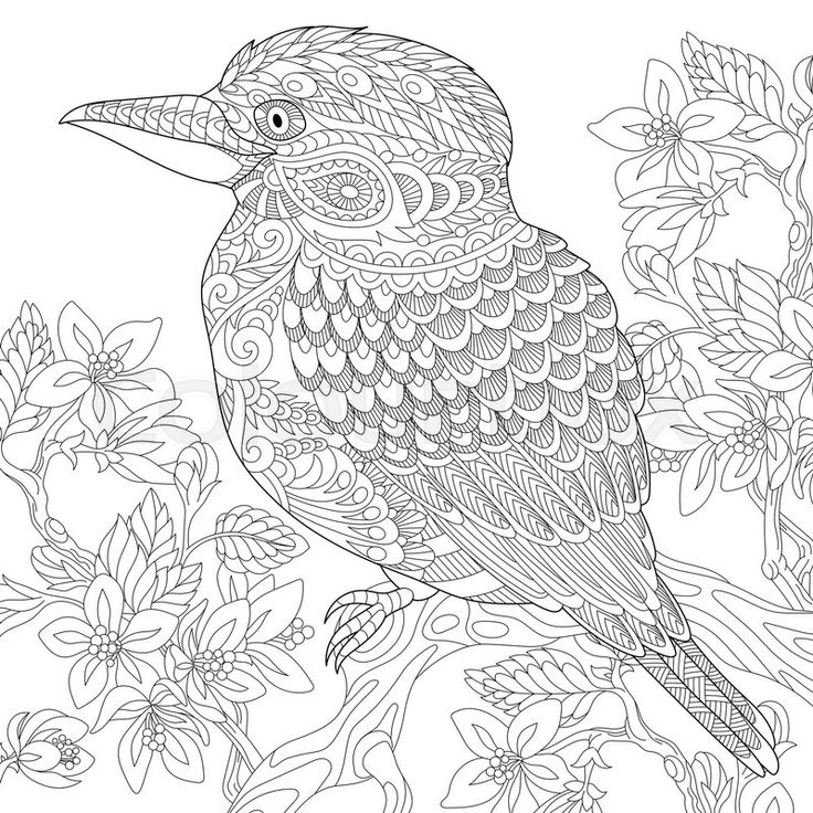 566 best Colouring images on Pinterest
