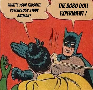 BoBo Doll experiment!! =)