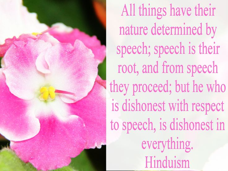 All things have their nature determined by speech; speech is their root, and from speech they proceed; but he who is dishonest with respect to speech, is dishonest in everything. Hinduism Laws of Manu Source: http://holy-writings.com/index.php?a=RESULT&d=/en/Hinduism/Laws%20of%20Manu.txt&q=speech&q2=16&c=1#phrase-16