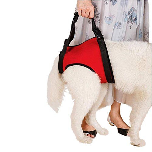 Dogs Lift Harness - Dogs Lift Support Rehabilitation Harness Helping Support for Elderly or Arthritis Dogs (REAR-L, Red) *** You can find out more details at the link of the image.