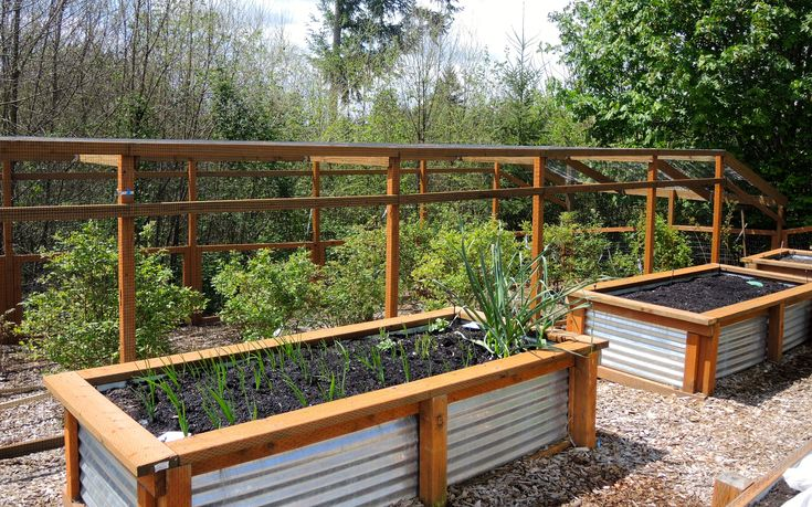 Galvanized Raised Beds With Instructions Porch Garden