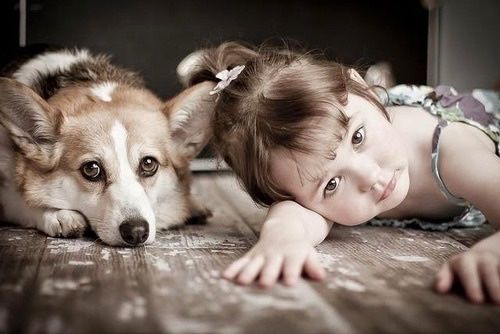 Sweet Picture. Adorable little girl with her Corgi.