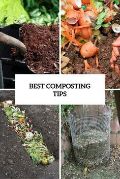 #Gardening : Good Composting Tips