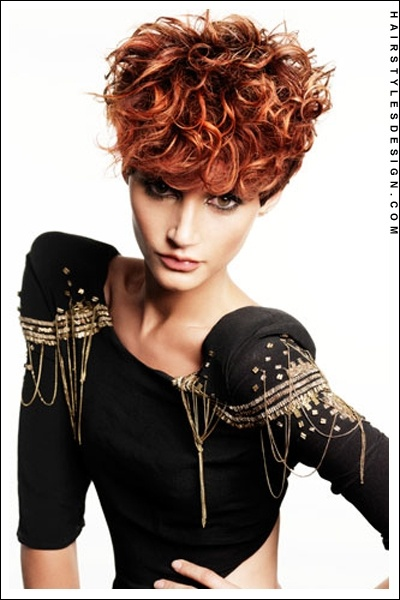 pixie style hair cuts 1000 ideas about curly crop on curly 2550
