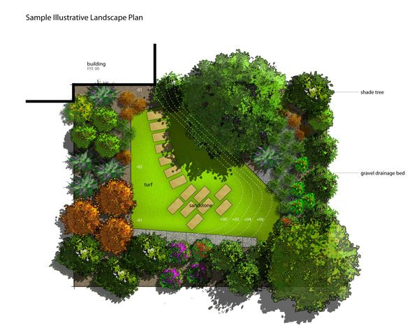 landscape plan trees