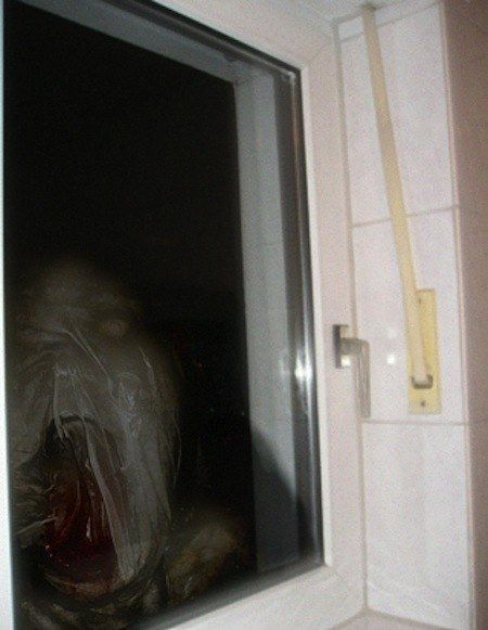 *Screams again* | 23 Creepy Pictures That Will Make You Scream Every Time