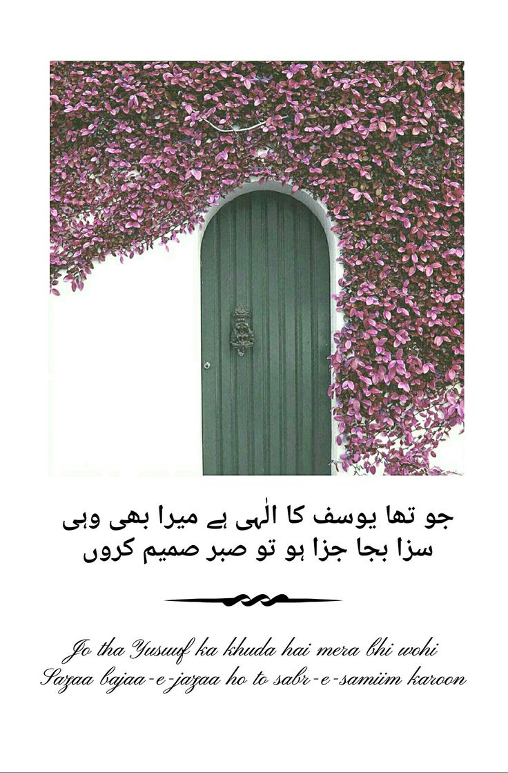 (12.k) Poetry by #Shamuel_Ibrahim_Sayedi