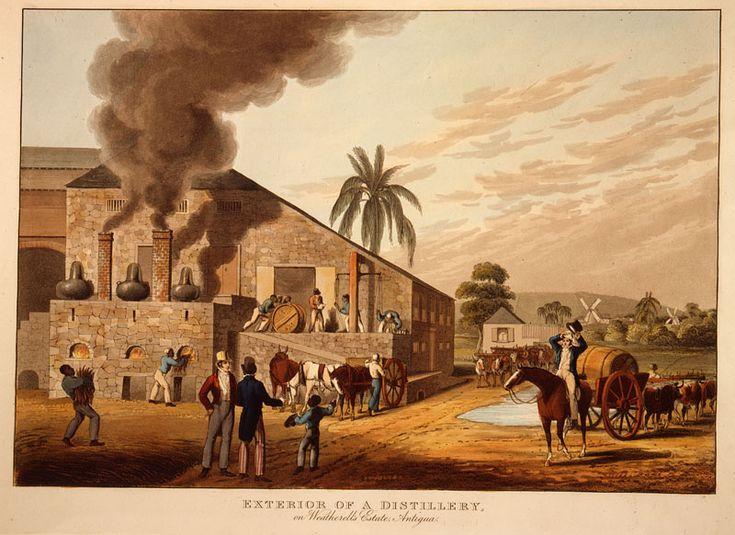 The Sugar Revolution Essay Sample