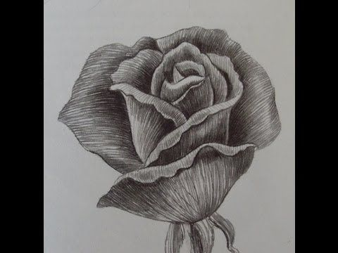 imparare a disegnare un fiore 3 - YouTube