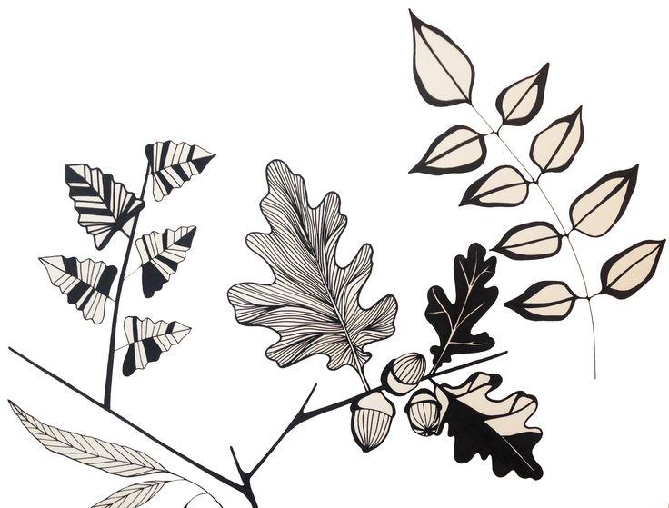 Hardwood leaves inspired illustration