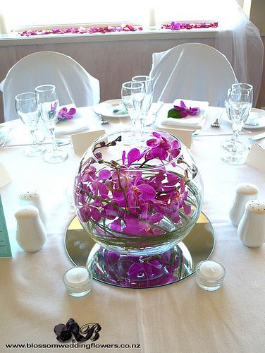 So elegant and simple orchid stem swirled in glass bowl