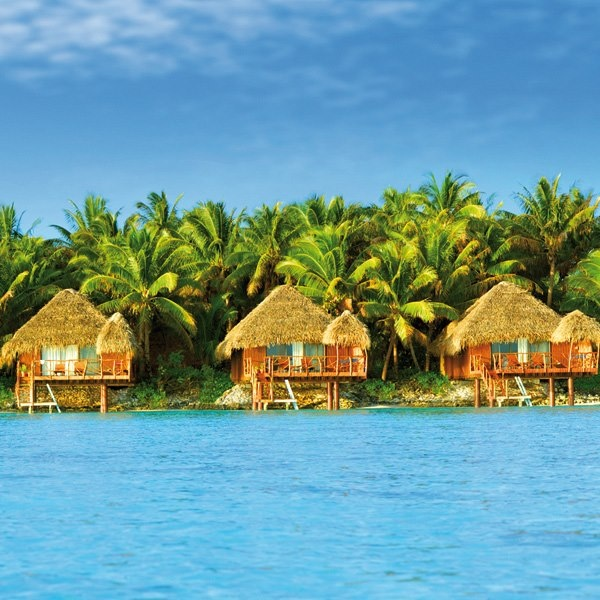 66 Best Love Cook Islands Images On Pinterest Beautiful