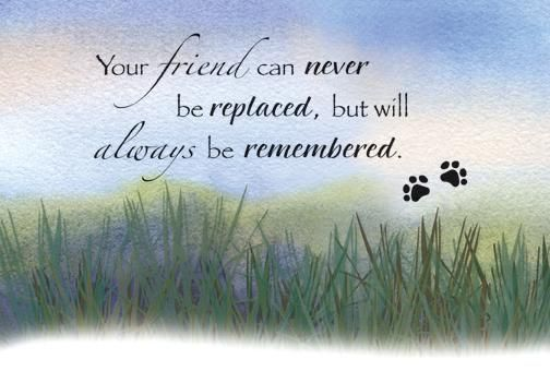 pet loss poems and quotes | Grassy Prairie Pet Sympathy Card