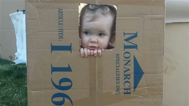 When Upside Down becomes Right Side Up! Stopping a Delinquent Three-Year-Old Box Fort Builder in Ogden?