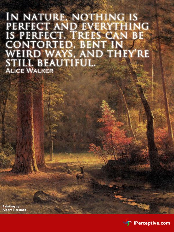 In nature, nothing is perfect, but... | Quotes Tall (Vol I ...