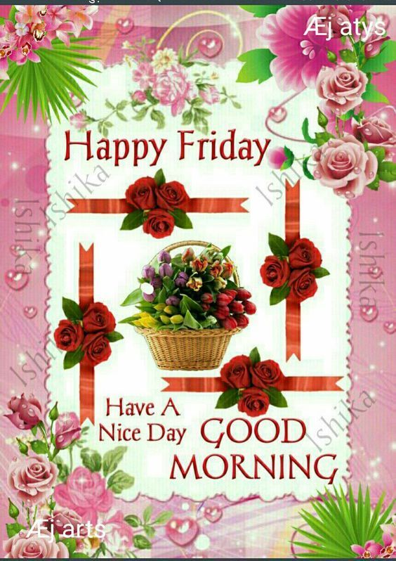 have a nice friday morning friday friday quotes have a nice day