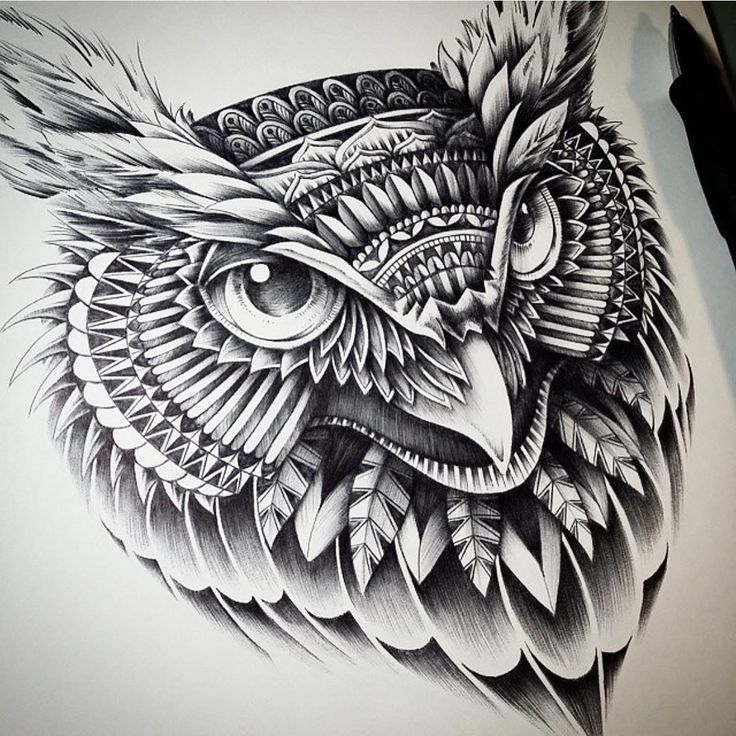 Owl Head. Ornate and Intricate Animal Drawings. To see more art and information about Ben Kwok click the image.