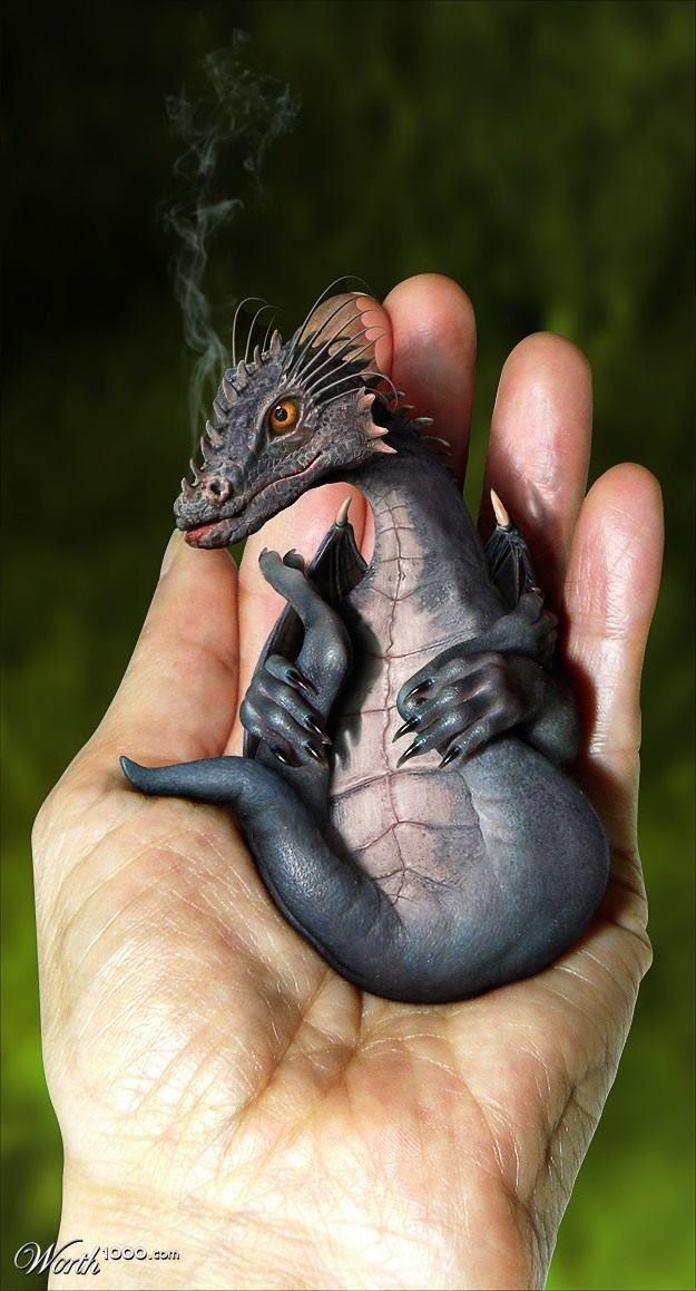2/19/14 11:21p Cozy Warm Hand Holding Baby Puff Smokin' Dragon by fantasyart.worth1000.com