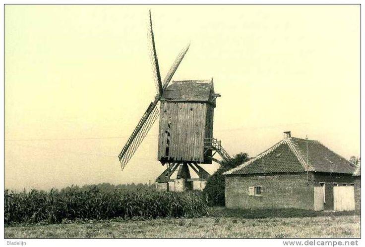 Postkaarten > Europa > België > Vlaams-Brabant > Ternat - Delcampe.be