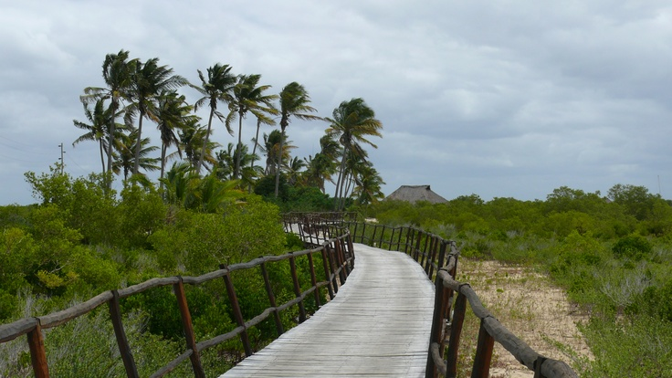 The boardwalk to the Flamingo Bay Resort and Chalets. Mozambique