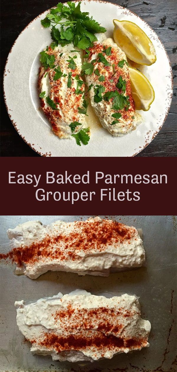 Oven Baked Parmesan Grouper Fillets Gritsandpinecones Com Recipe Grouper Recipes Weeknight Dinner Recipes Easy Grouper Fish Recipes